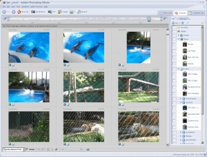 Adobe_Photoshop_Album_screenshot